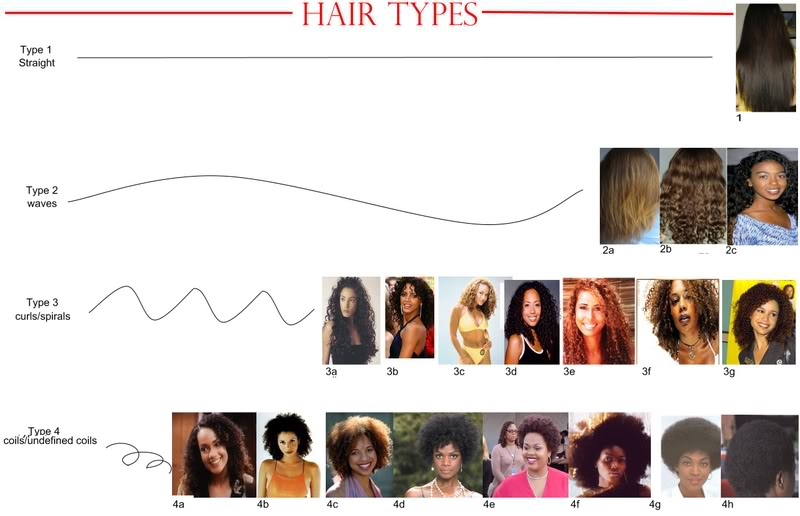 Is Hair Typing Tearing The Natural Hair Community Apart Young
